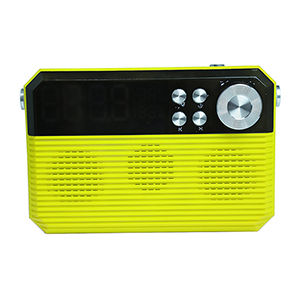What points should we care when buying a bluetooth speaker  ?
