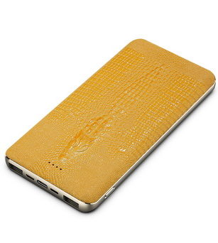 The Cellphone of Accessories-Power bank