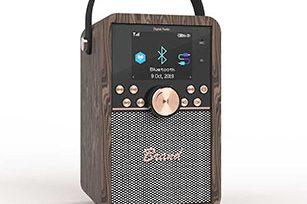 DAB Wooden Cabinet Wirless Bluetooth Speaker with FM Radio/Aux/ TF/ USB